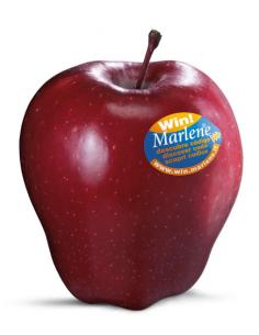 manzana royal gala Marlene